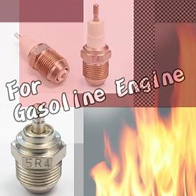 Plug For Gasoline Engine